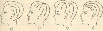 Типы прически и их характеристика